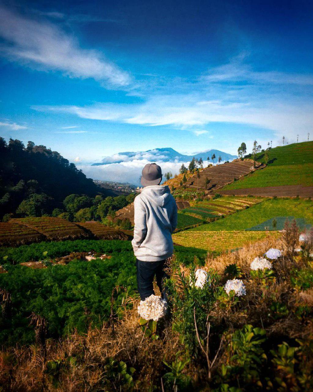 7 Spot Instagramable Perjalanan Menuju Cangar - Amazing Malang