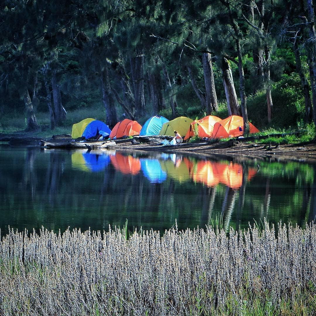 9 Camping Ground Di Malang Raya Amazing Malang