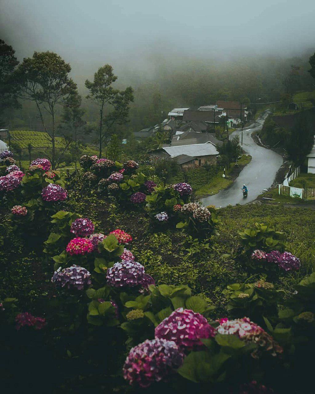 10 Spot yang Cocok untuk Menikmati Udara Sejuk di Malang - Amazing