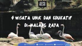 4 Wisata Unik dan Edukatif di Malang Raya | Amazing Malang